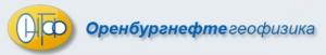 Оренбургнефтегеофизика ООО ОНГФ
