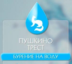 Пушкино Трест ООО