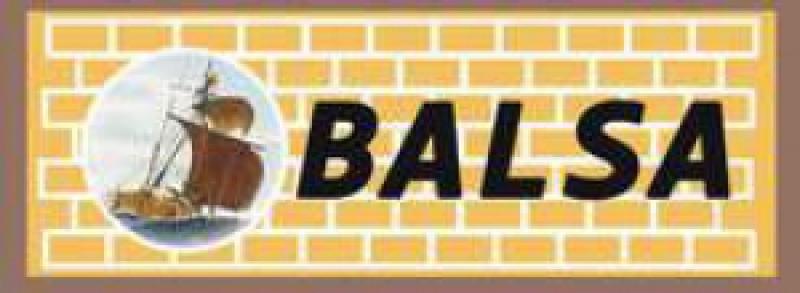 Балтийский Строительный Альянс ЗАО