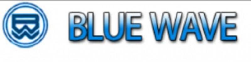 Блу Вай Шиппинг BlueWaveShipping Филиал