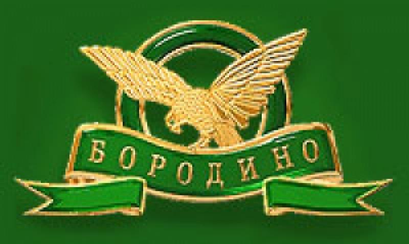 Бородино ООО