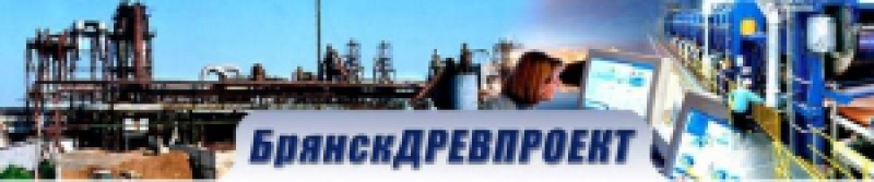 БрянскДревПроект ООО