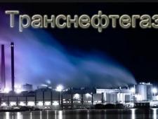 Транснефтегазпроект ООО